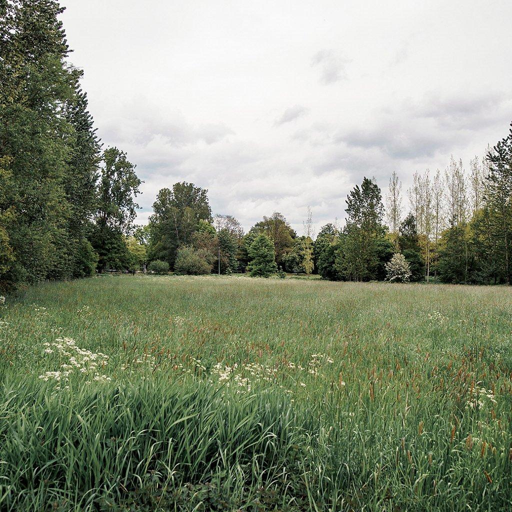 2108-Diepenbeek-copy.jpg